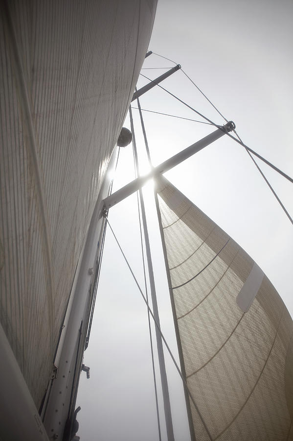 Looking Up To Full Sails, Backlit Photograph by Siri Stafford