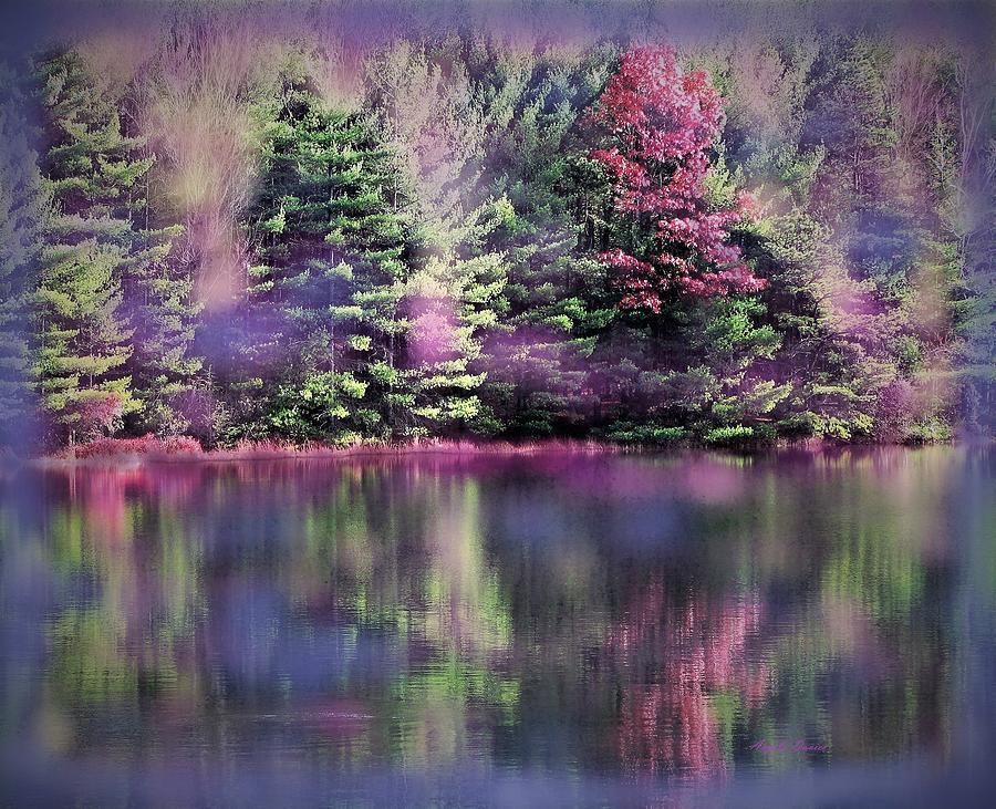 Loon Lake Reflections by Angela Davies