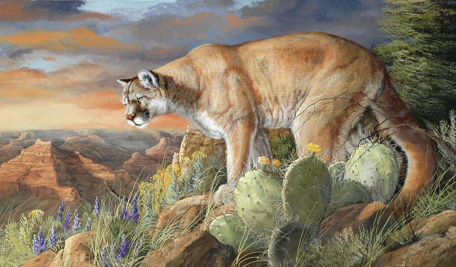 Wildlife Painting - Lord Of The Canyon by Trevor V. Swanson
