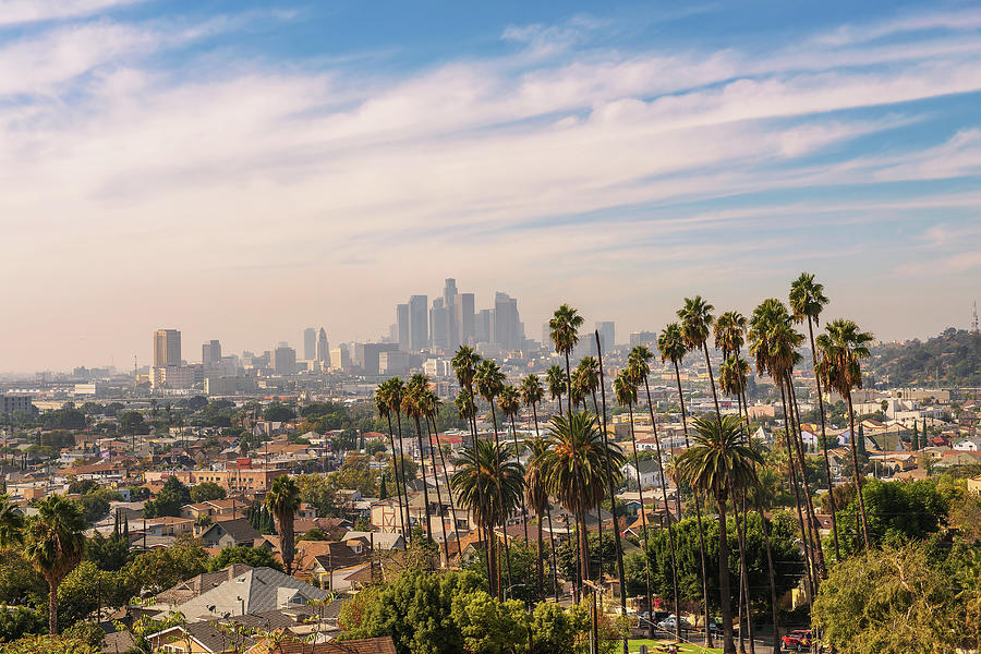 Los Angeles Skyline At Sunset With Palm Trees In The Foreground Photograph By Miroslav Liska