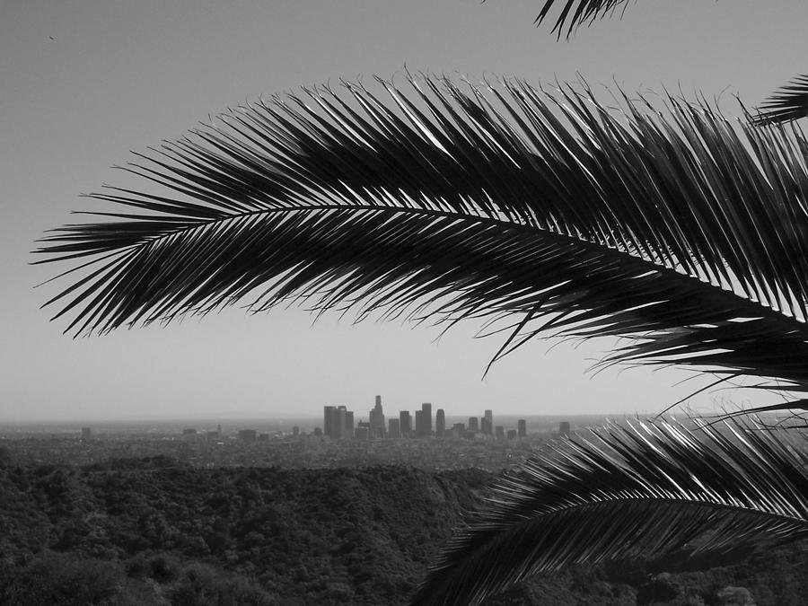 Los Angeles Skyline From Hollywood Hills Photograph by Mike Shaffer