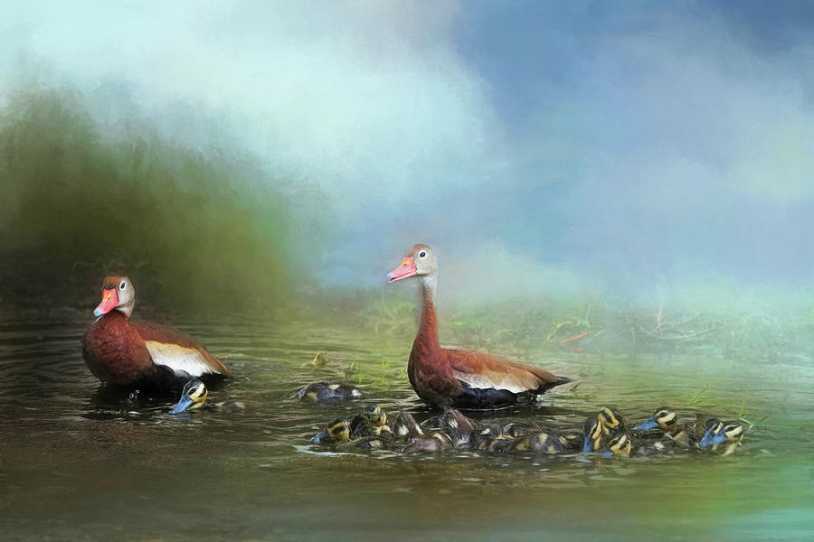 Black-bellied Whistling Duck Photograph - Lots Of Little Whistlers by Donna Kennedy
