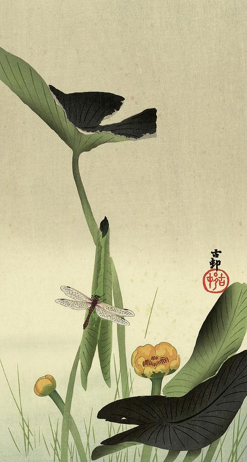Lotus Painting - Lotus, 1930 by Ohara Koson