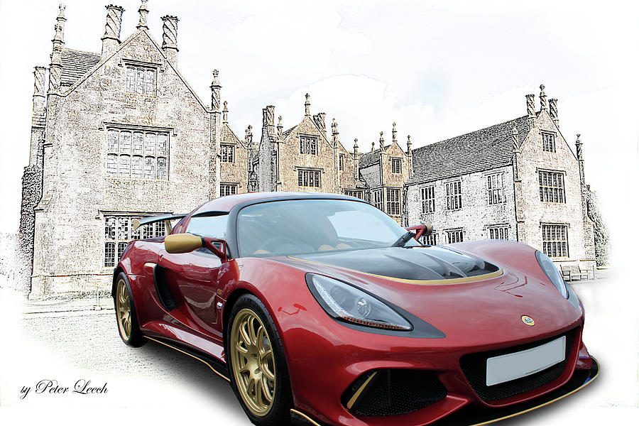 Lotus at Home by Peter Leech