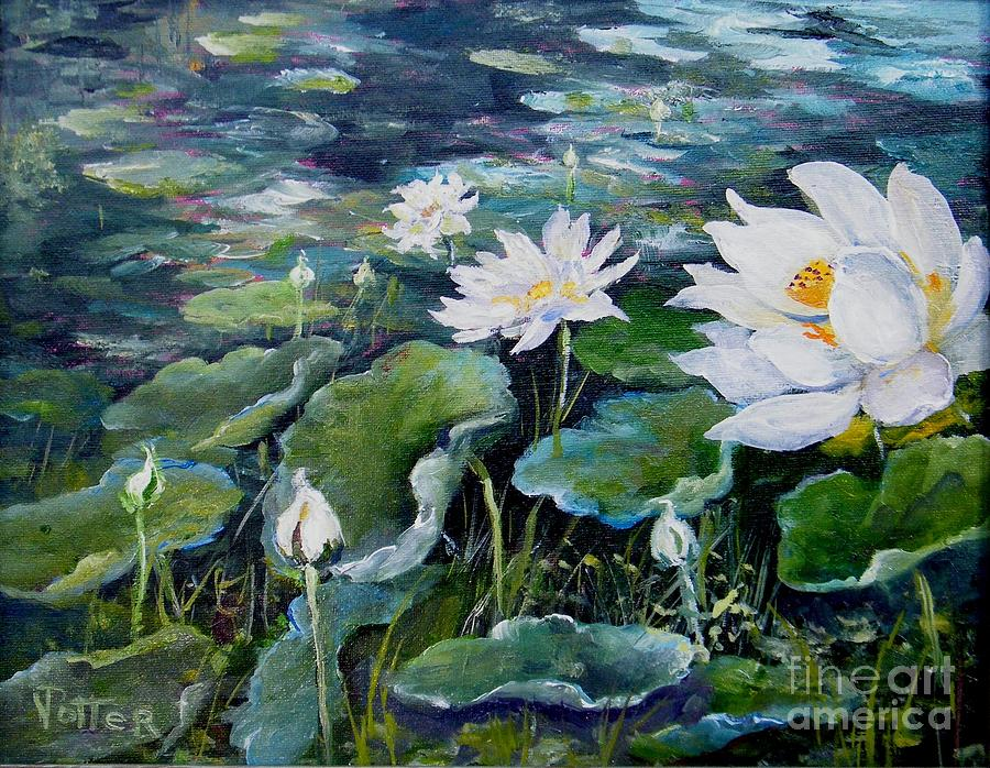 Lotus Blossoms by Virginia Potter