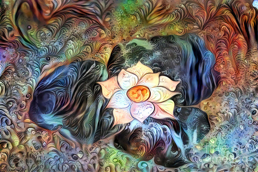 Lotus Dream by Diann Fisher