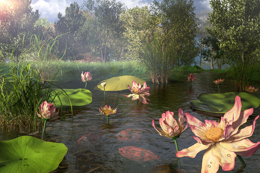 Lotus Garden by Mary Almond