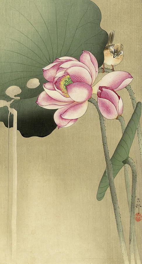 Lotus Painting - Lotus With Bird, 1936 by Ohara Koson