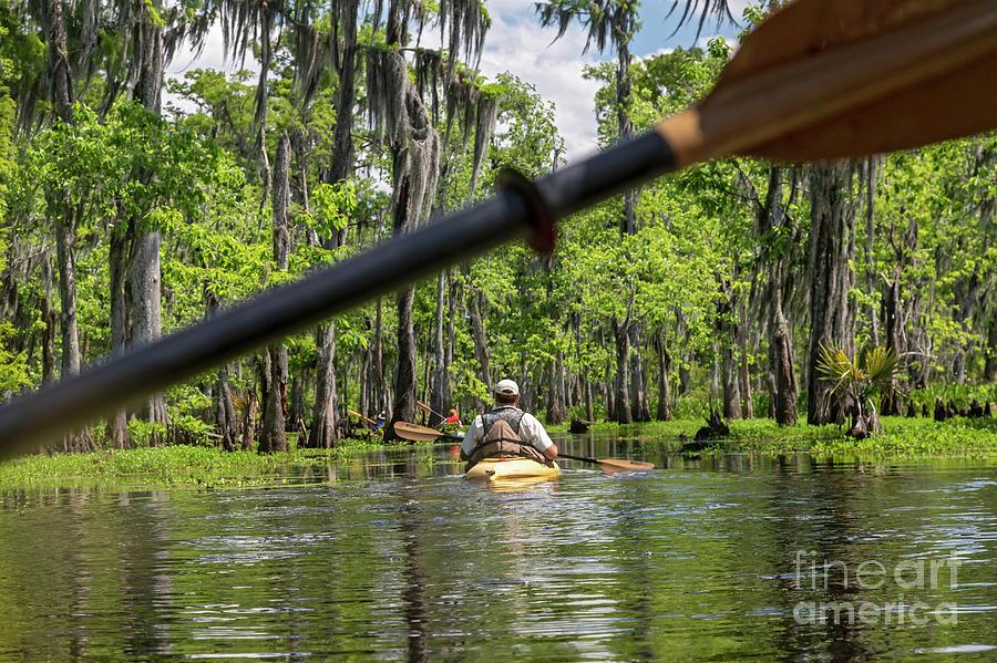 Louisiana Bayou by Jim West