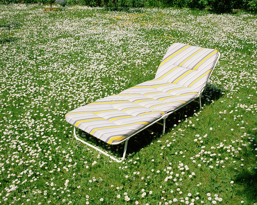Lounge Chair In Meadow Photograph by Jupiterimages