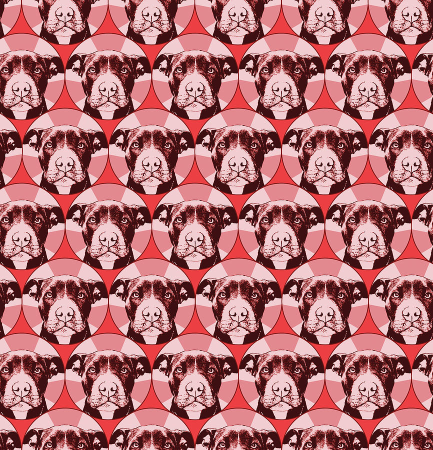 Pups Mixed Media - Love A Bull Pattern 1 by Dean Russo