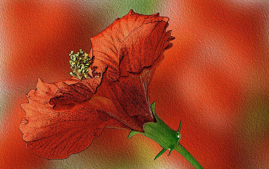 Wallpaper Digital Art - Love Like A Beautiful Flower by Manjot Singh Sachdeva