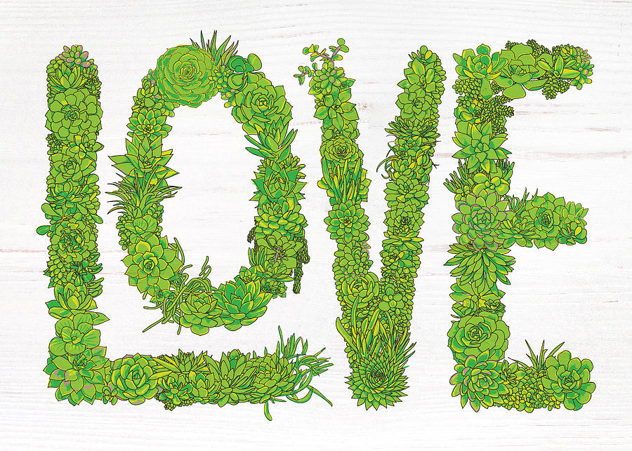 Love Succulent White Background by Jen Montgomery