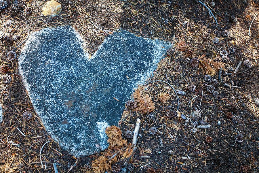 Love You by Bonnie Bruno