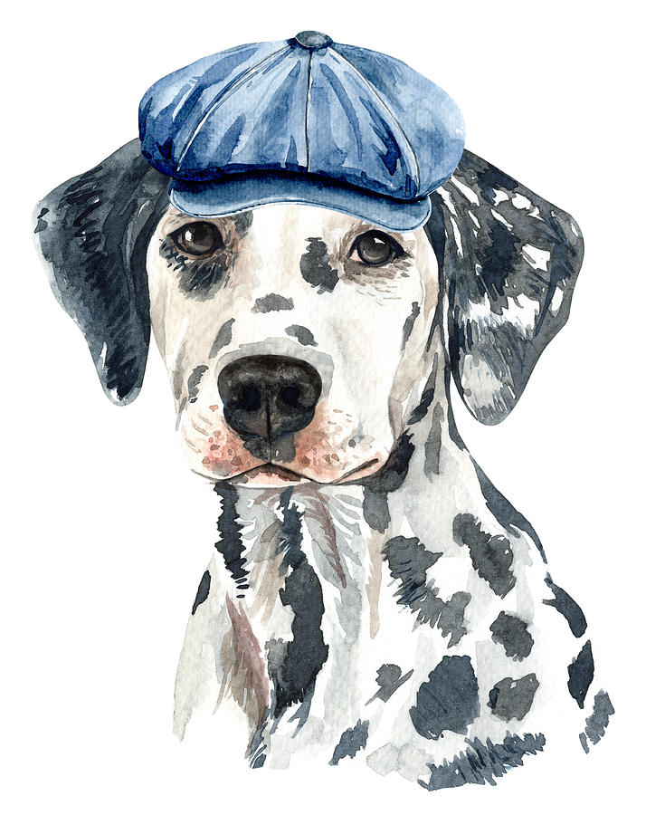 Lovely Dalmatian With Beret Watercolor by Cool Vintage Art