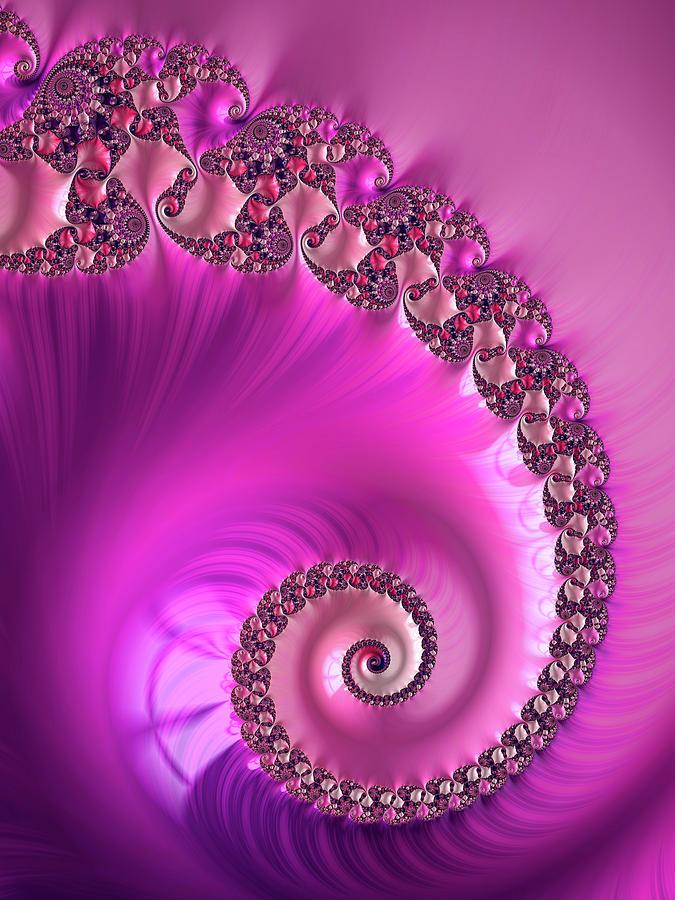 Lovely Fractal Spiral Violet And Hot Pink Digital Art