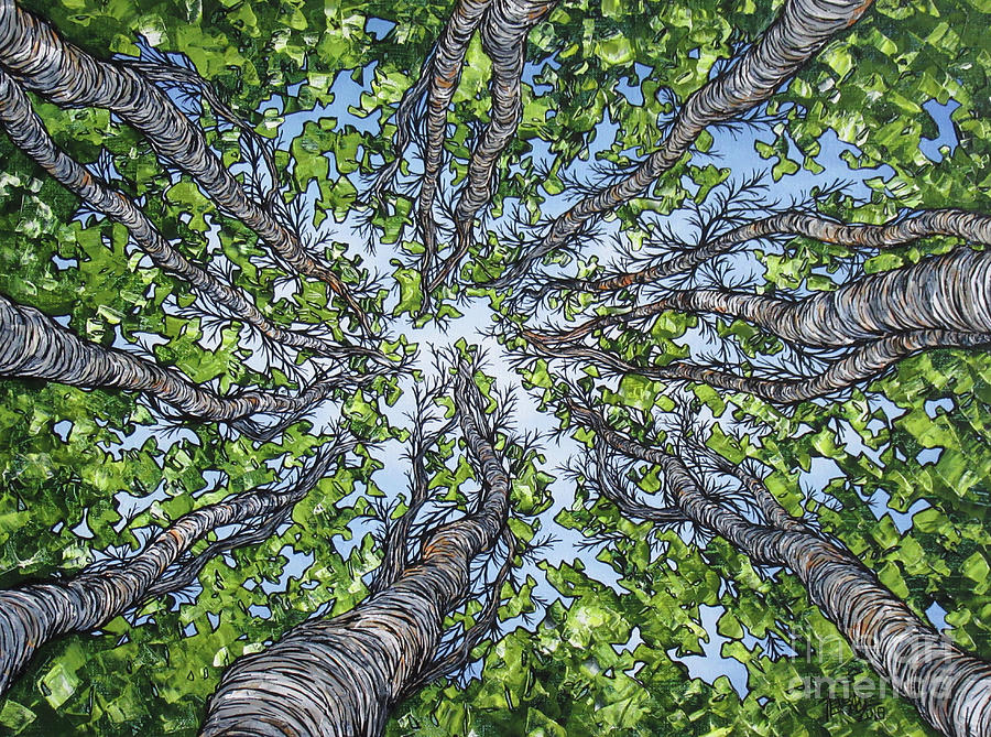 Lovely Tree View by Tracy Levesque