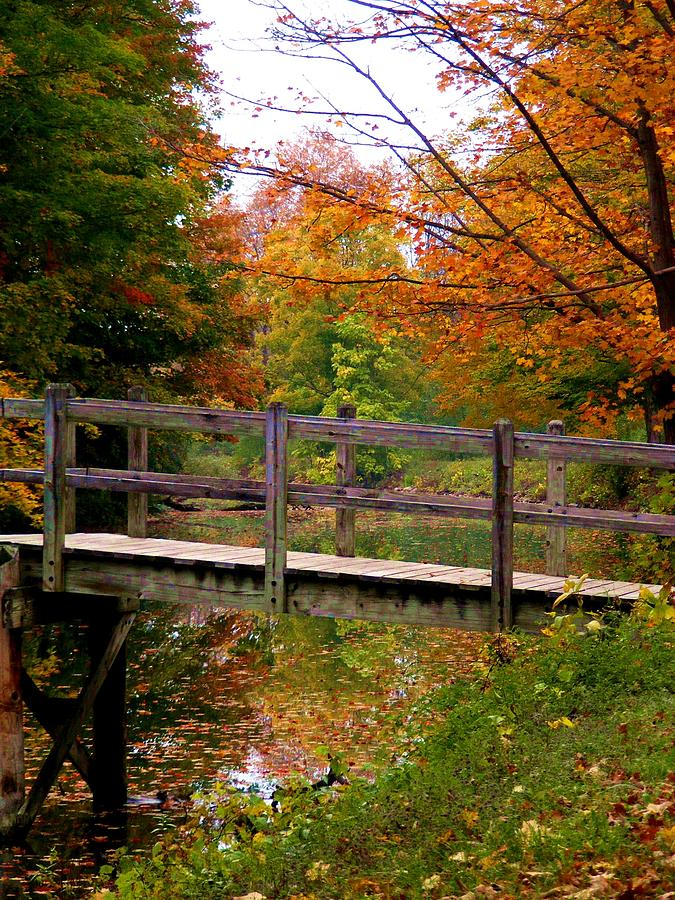 Low Bridge Over the Erie Canal by Lori Kingston