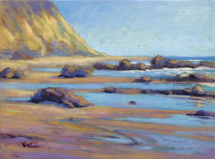 Low Tide at  Crystal Cove by Konnie Kim