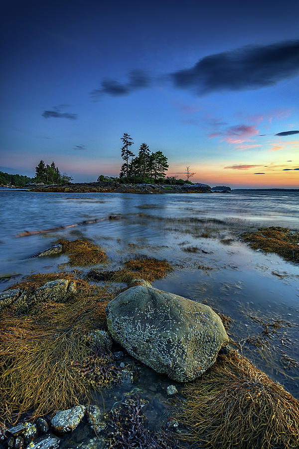 Low Tide at Lookout Point by Rick Berk