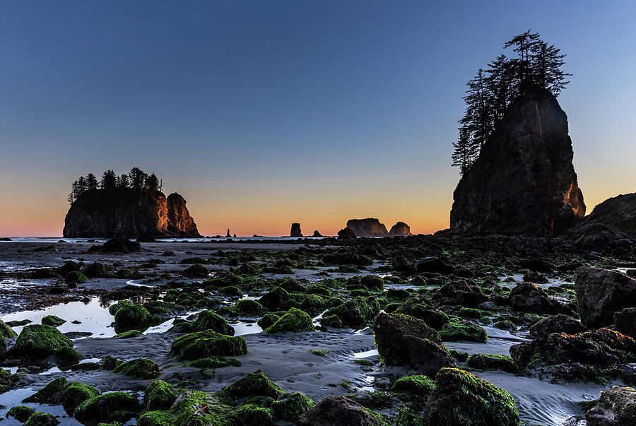 Low Tide by Ed Clark