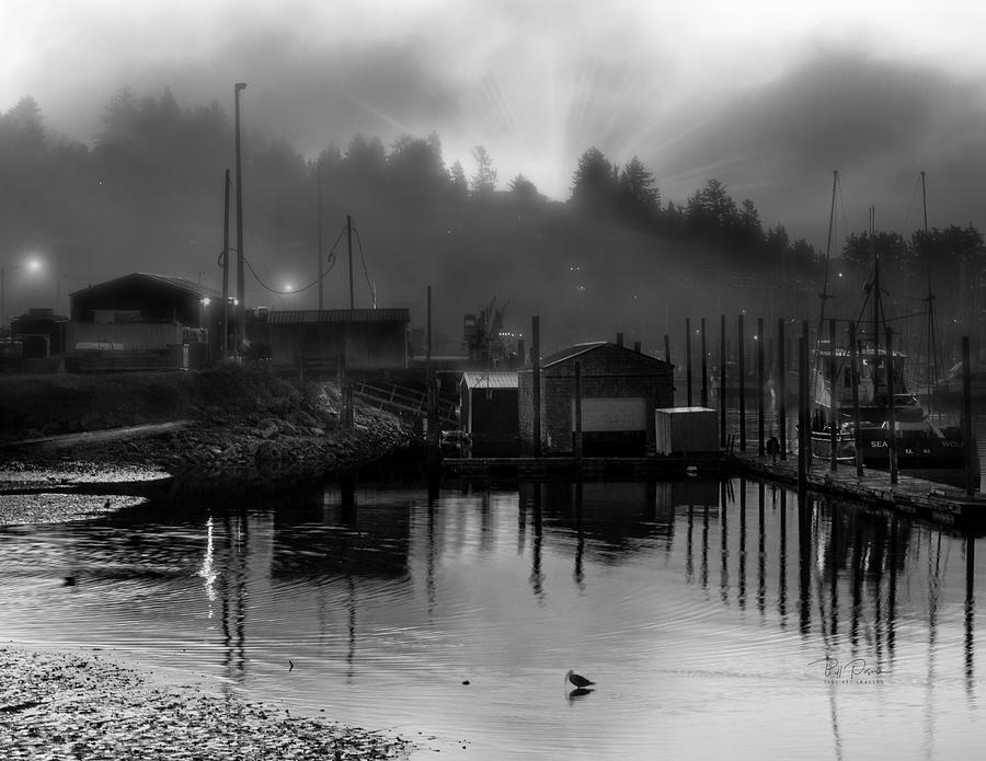 low tide foggy by Bill Posner