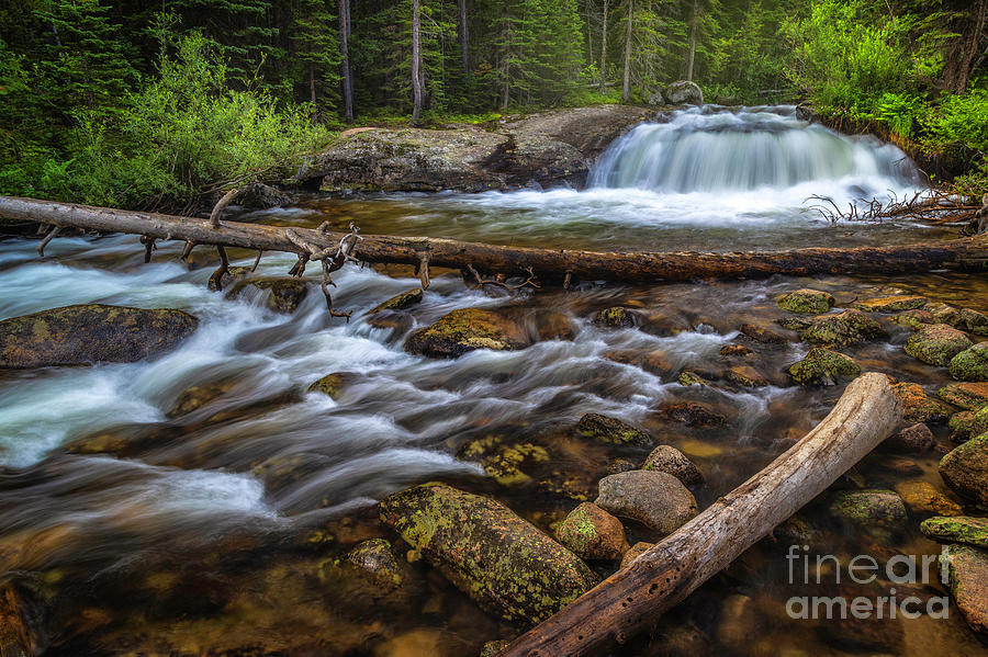Lower Copeland Falls flowing in Rocky Mountain National Park by Ronda Kimbrow