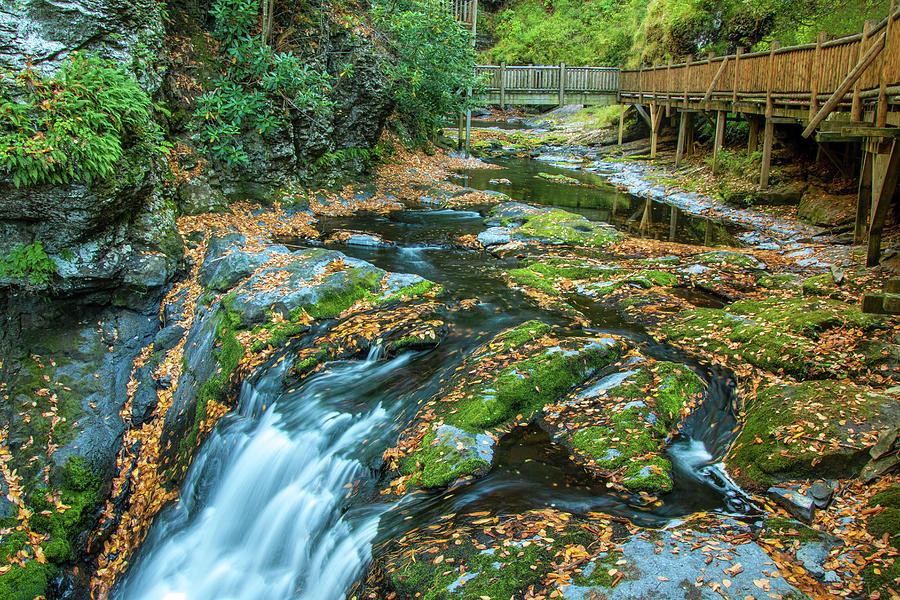 Lower Gorge Falls at Bushkill by Kristia Adams