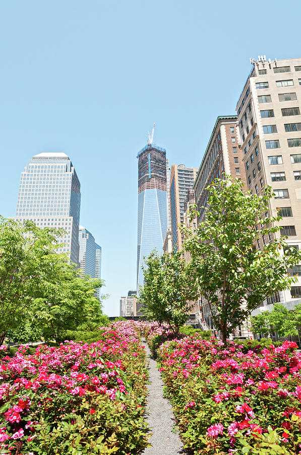 Lower Manhattan With Freedom Tower And Photograph by Travelif