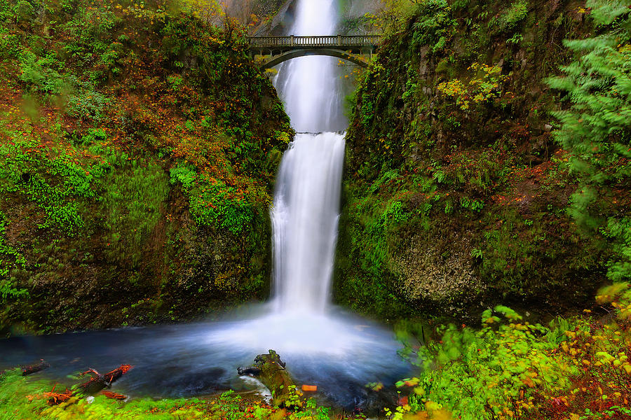 Lower Multnomah Falls by Don Hoekwater Photography