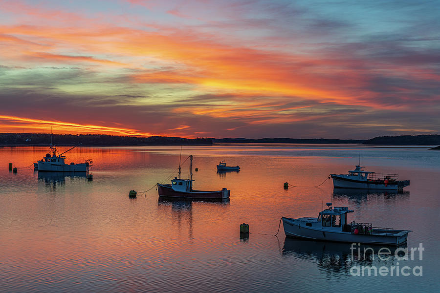 Lubec Sunset by Craig Shaknis