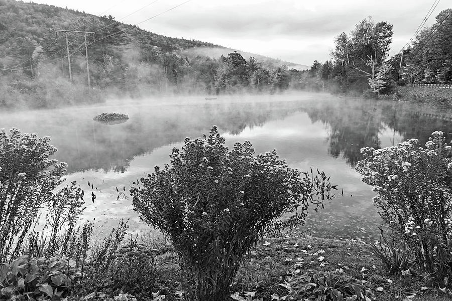 Ludow VT Flowers Misty Morning Fall Foliage Black and White by Toby McGuire