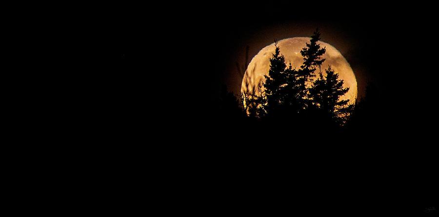 Luna by Doug Gibbons