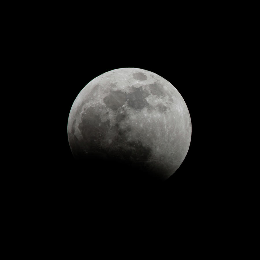 Lunar Eclipse 2019 - 1 by Jim Figgins