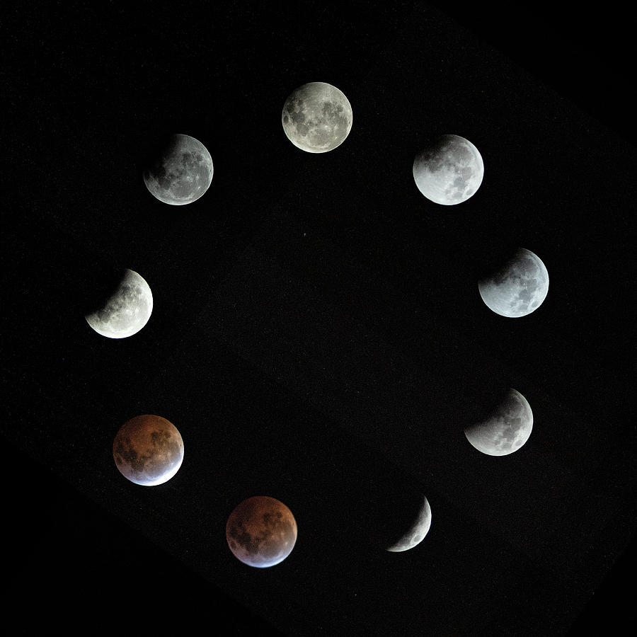 Lunar Photograph - Lunar Eclipse by Zev Steinhardt