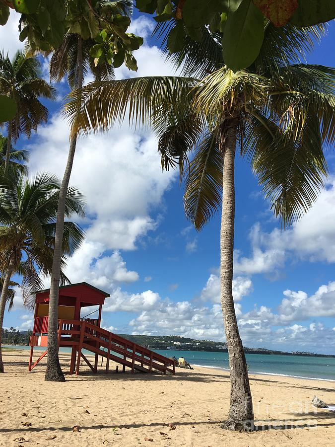 Luquillo Beach by The Art of Alice Terrill