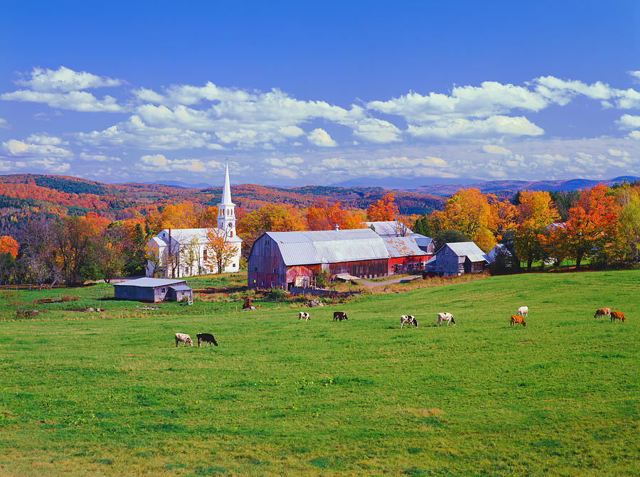 Lush Autumn Countryside In Vermont With Photograph by Ron thomas