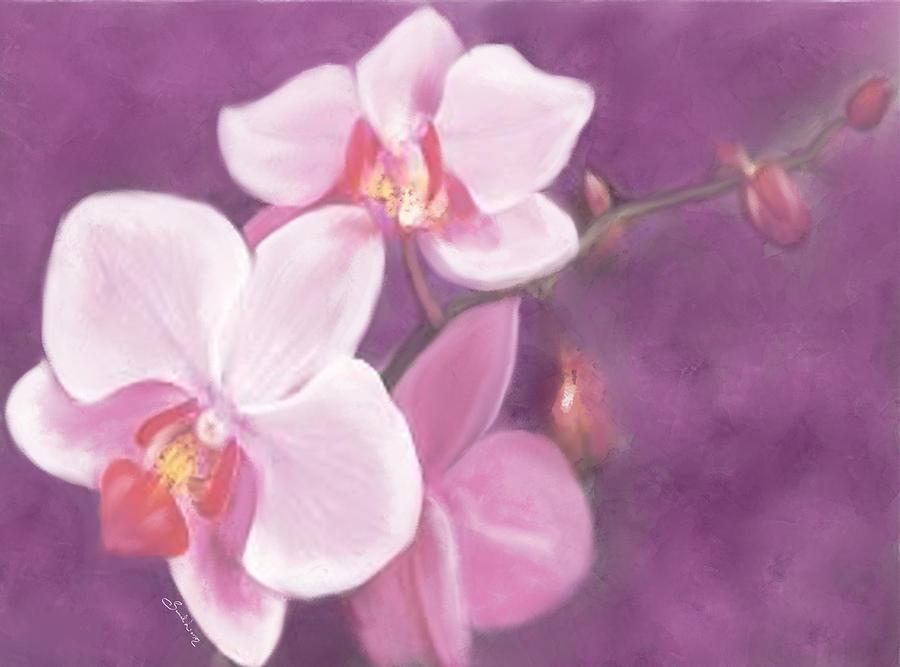 Luxurious Petals by Sannel Larson
