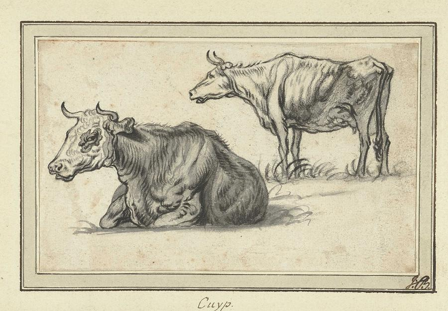 Lying And A Standing Cow, Aelbert Cuyp, 1630 - 1691 Painting