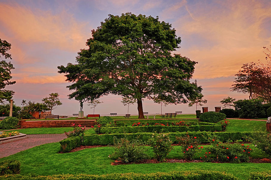 Lynch Park Sunset Beverly MA Garden and Tree by Toby McGuire