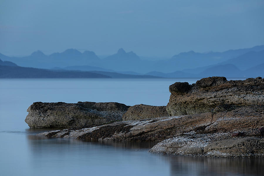 Madrona Blues by Randy Hall
