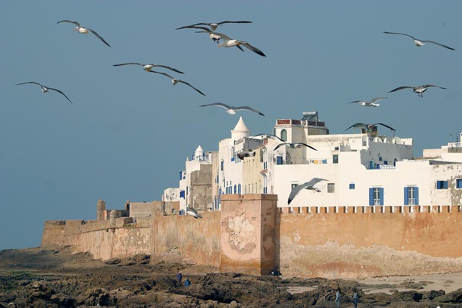 Magic Essaouira Photograph by Lucgillet