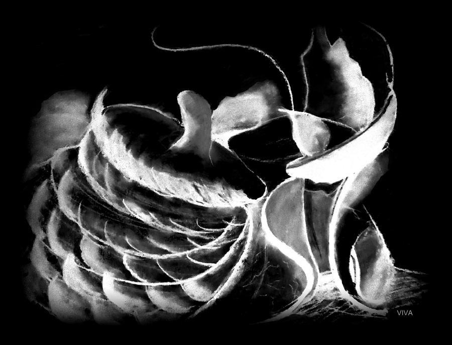 Magic Mushrooms by VIVA Anderson