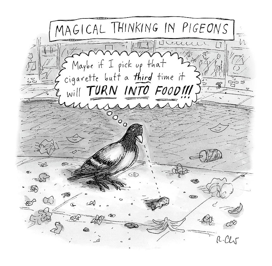 Magical Thinking In Pigeons Drawing by Roz Chast