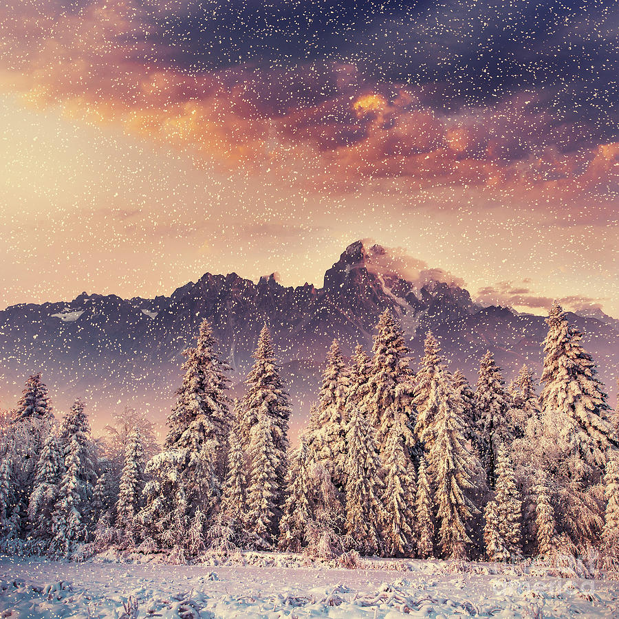 Altitude Photograph - Magical Winter Landscape, Background by Standret