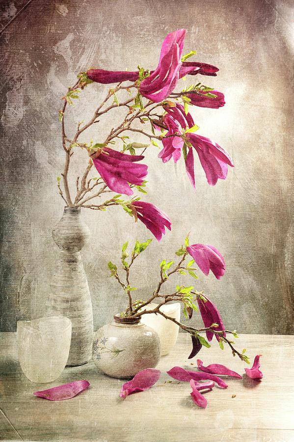 Magnificent Magnolia by Randi Grace Nilsberg