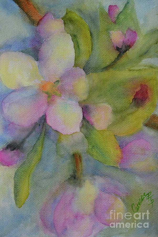 Magnificent Magnolias by Caroline Harris