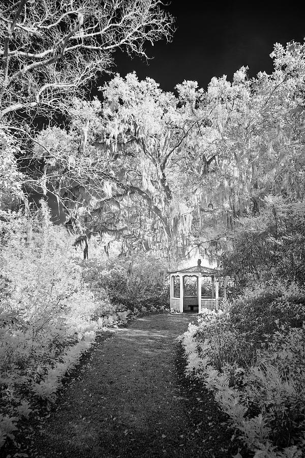 Magnolia Gazebo II by Jon Glaser