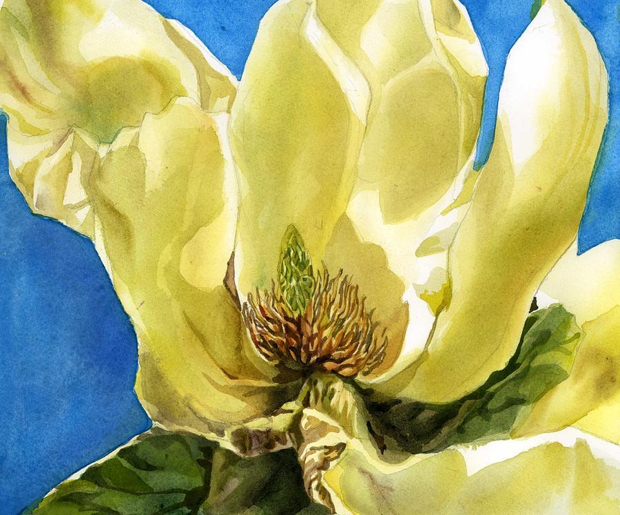 magnolia morning by Alfred Ng