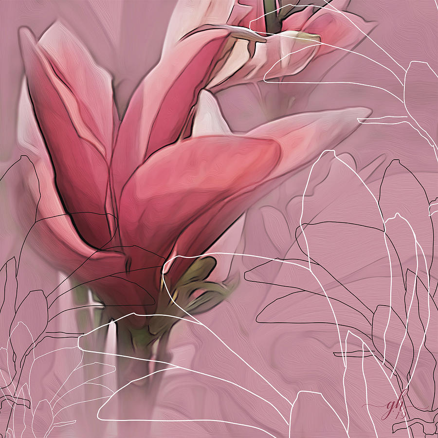 Magnolia Musings by Gina Harrison